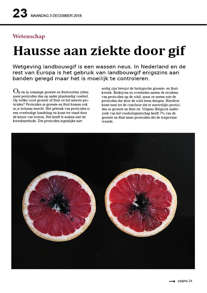 grapefruit - Conceptueel 2019